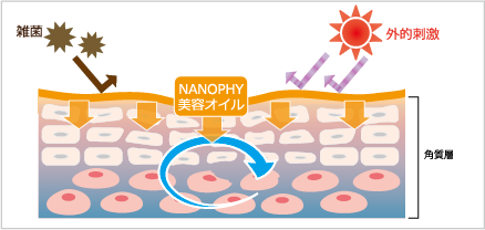 〈  NANOPHYを使用  〉